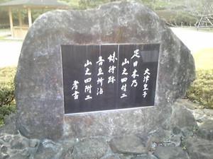 Asihikino_taima_11